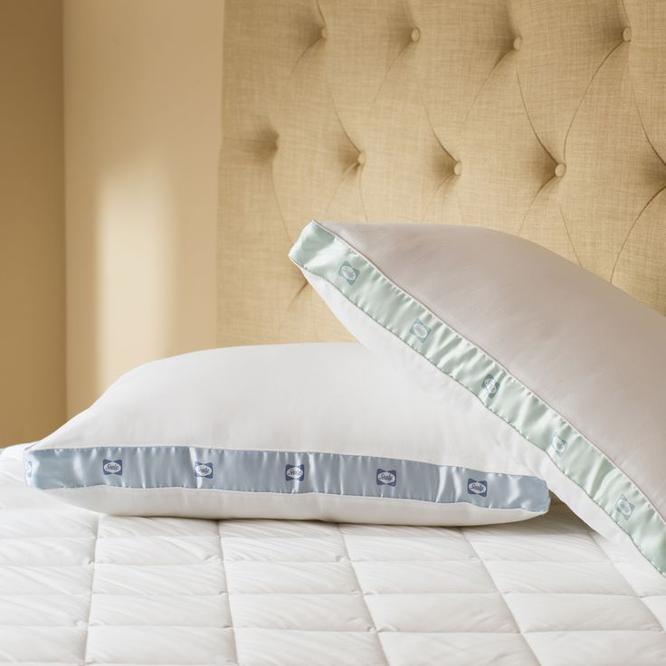 sealy cotton sateen 300 thread count firm density pillows set of 2 overstock
