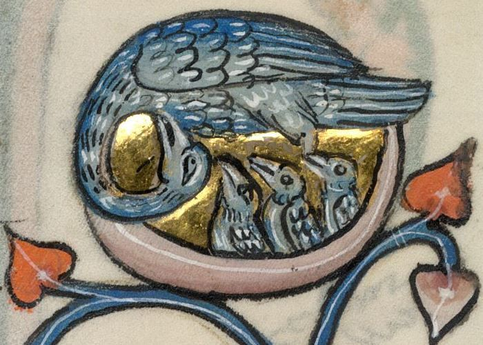 Detail from The Luttrell Psalter, British Library Add MS 42130 (medieval manuscript,1325-1340), f44r
