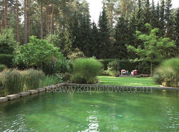 Ekologiczny basen kąpielowy