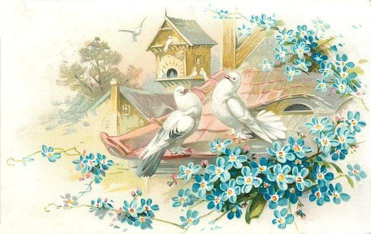 Старинные открытки с лебедями, дорогу