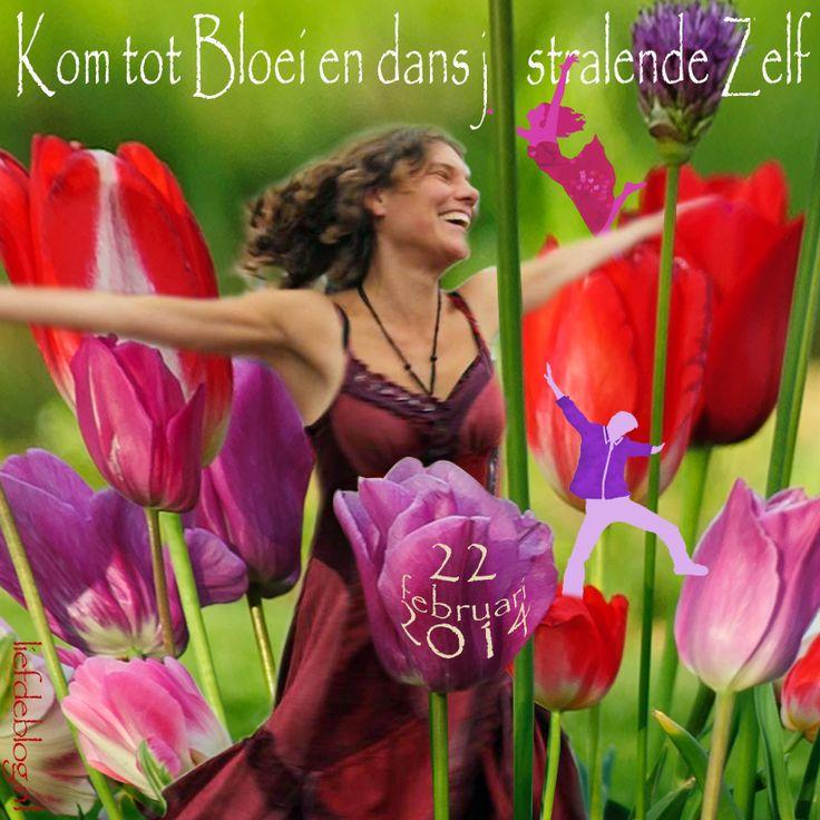 Kom tot bloei en dans je stralende Zelf Op 22 februari 2014 Biodanza dansavond met Digna en DJ Berry  in De Balzaal in Gouda!