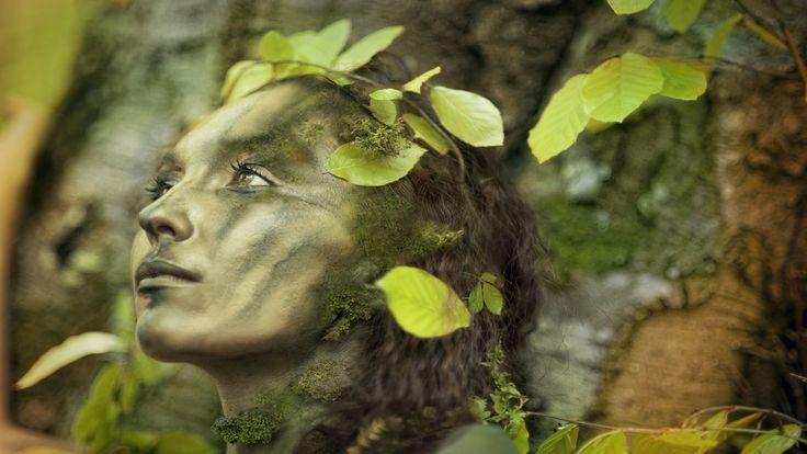 Relaxing Celtic Music: Fantasy Music, Flute Music, Harp Music, Beautiful...