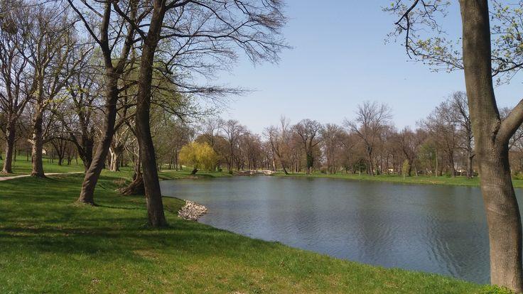 tavasz a tónál / spring at the lake