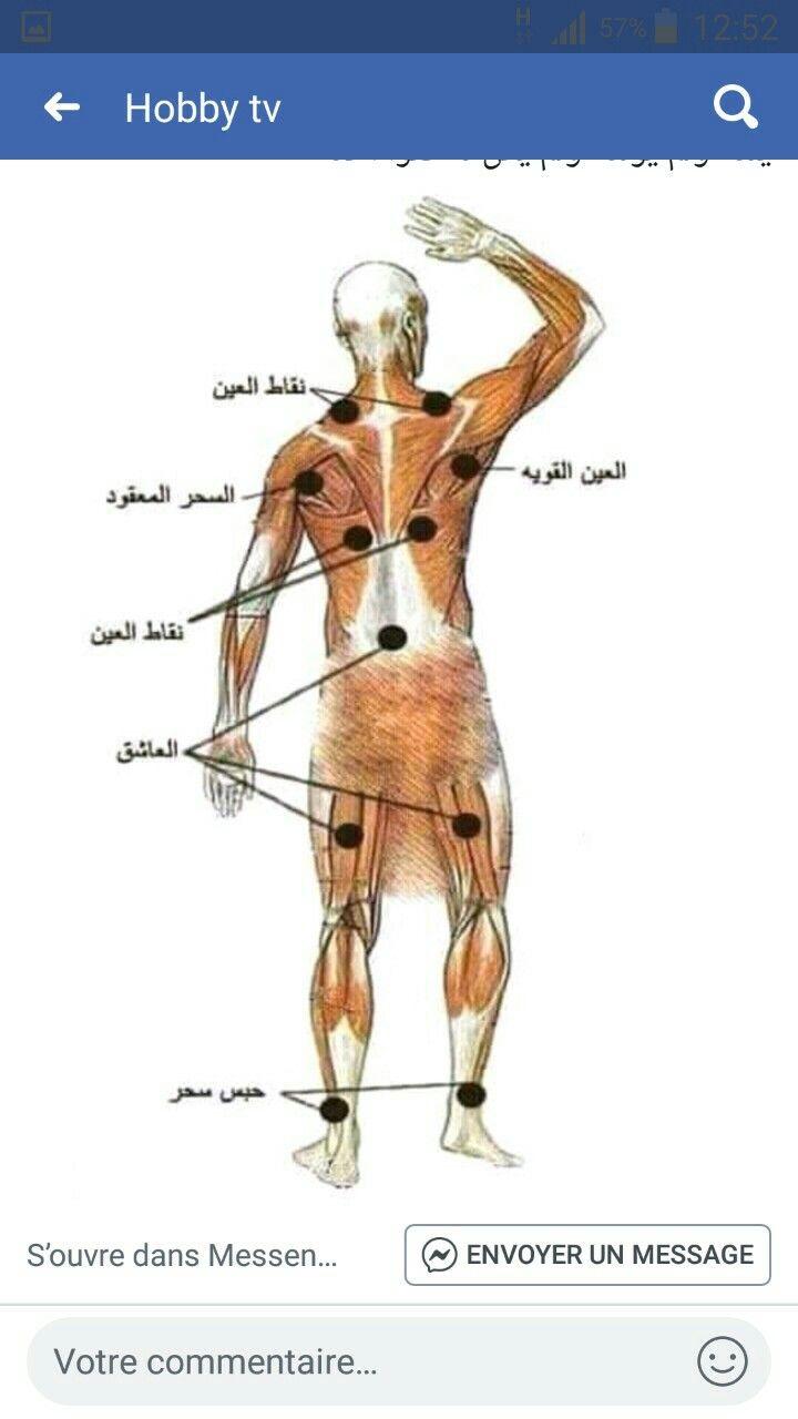 Pin By Ida Ben On علاج السحر و العين Giraffe Humanoid Sketch Art