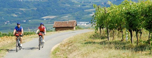Pedaling through Piedmont.