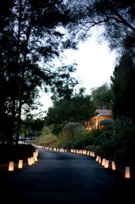 71 best Luminaries images on Pinterest Marriage Paper bags and