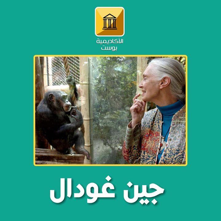 جين جودال Jane Goodall جين غودال هي عالمة متخصصة في القردة العليا والحياة البرية بريطانية الجنسية تعرف بأنها الخبير الرئيسي في الشمبا Pandora Screenshot Pandora