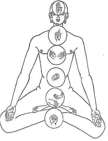 Мудры. Йога для пальцев рук. Описание, фото, назначение