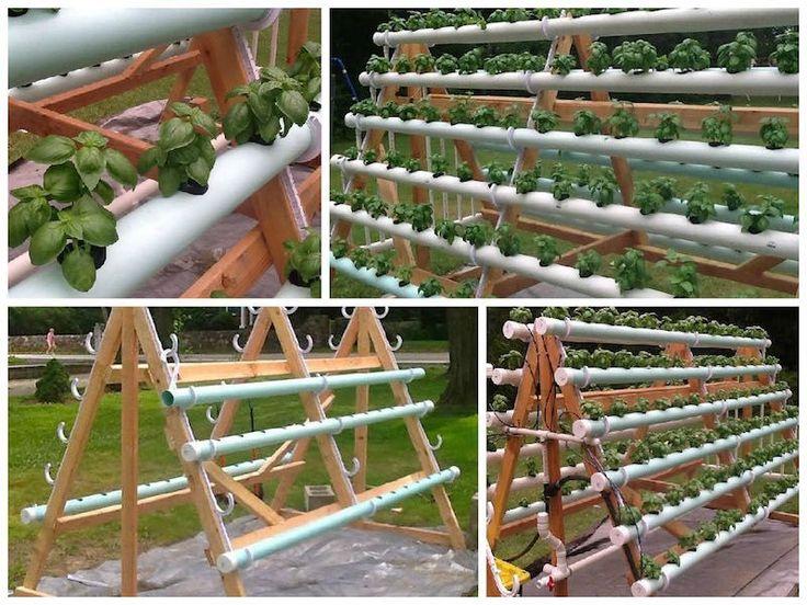 Cómo crear un sistema hidropónico casero con 168 plantas.