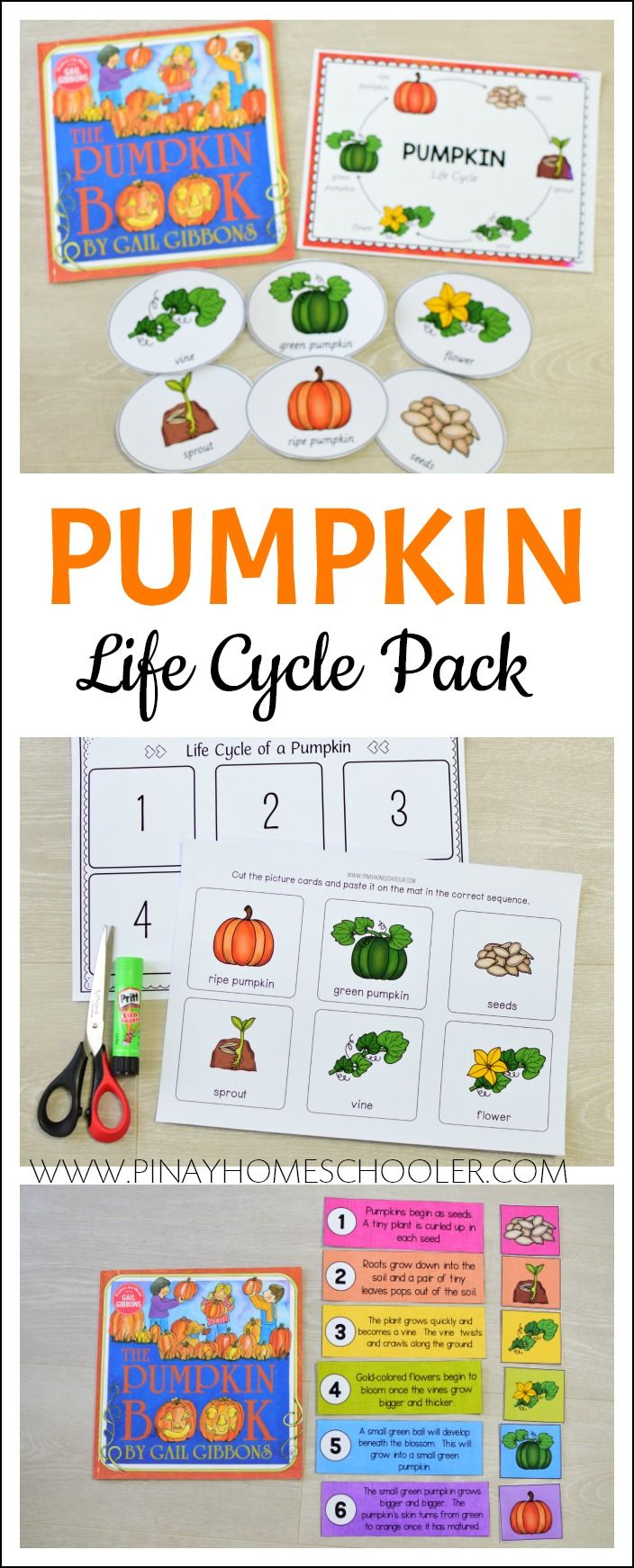 Life Cycle Of A Pumpkin Learning Pack Pumpkin Life Cycle Fall Preschool Activities Thanksgiving Activities For Kids [ 1742 x 704 Pixel ]