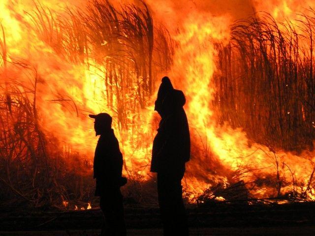 Burdekin farmers control a cane fire