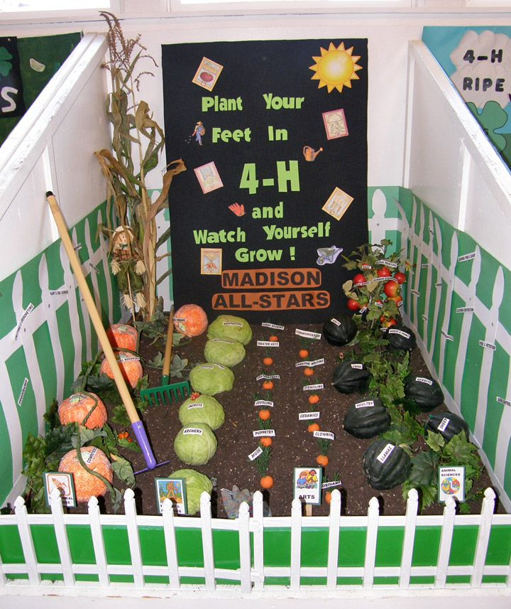 plant your feet in 4-H and watch yourself grow