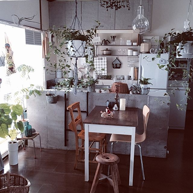 saokoさんの、Kitchen,セブンチェア,ウンベラータ,アイビー,丸椅子,かご好き,コンクリート壁紙,グレー好き,丁寧に暮らす,団地インテリア,緑のある暮らし,グリーン増殖中,木製サンタ,空中栽培についての部屋写真