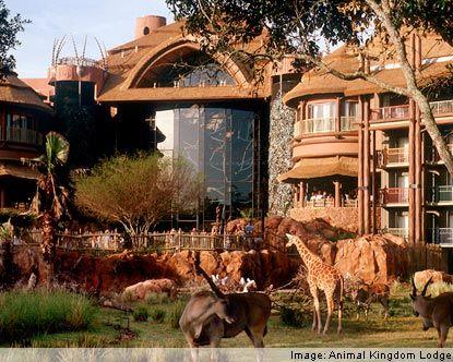 Disney Hotels Orlando World In