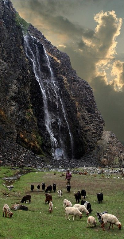 Tending the flock in Kharmang, Baltistan, northern Pakistan • photo: ghazighulamraza on Flickr