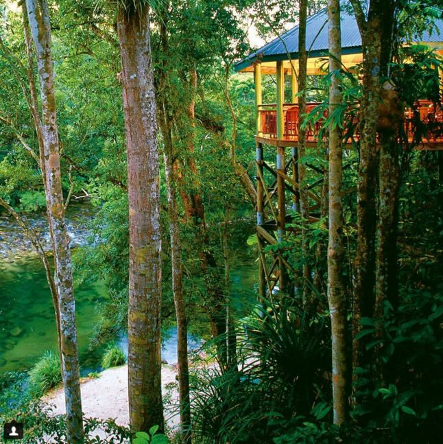 Sit back and indulge at Treehouse Restaurant in the Mossman area. The luxury Sliky Oaks Lodge sits on the edge of the incredible Daintree Rainforest. All reports say the food is just as good as the view.