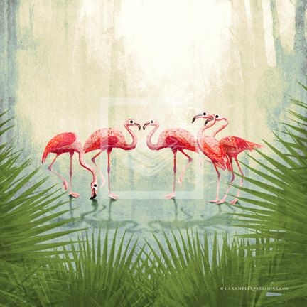 Jungle Safari Pink Flamingo Animal 10x10 by caramelexpressions