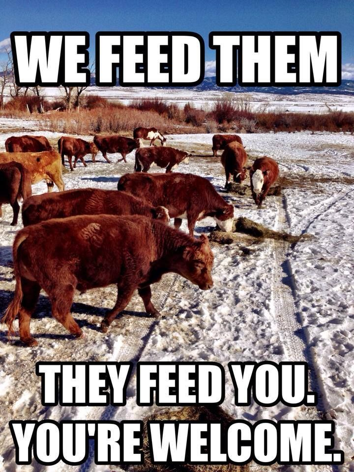 ❦ Here's to the people that get food to the world. - Cowboy Humor