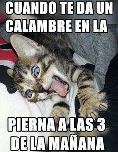 Los mejores memes para arrancar bien el martes - Taringa!