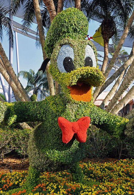Donald Duck at The Epcot International Flower & Garden Festival 2011 at Walt…