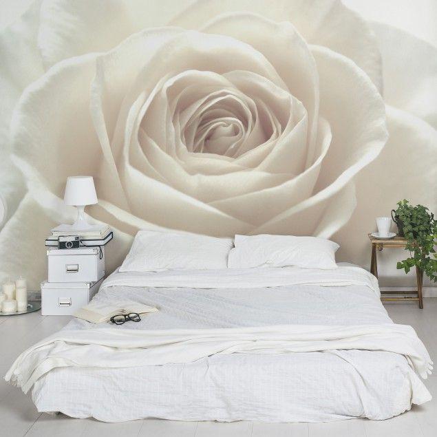 #Vliestapete - #Blumentapete Pretty White #Rose #Fototapete Breit #Rose #Rosen #Rosengarten #Blumen #Dornen #Liebe #Wandgestaltung #Dekoidee