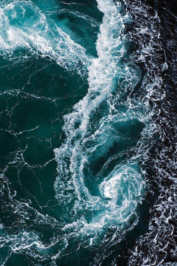 The whirlpools of Saltstraumen<br /> Atlantic marine life, Saltstraumen, Bodö, Norway