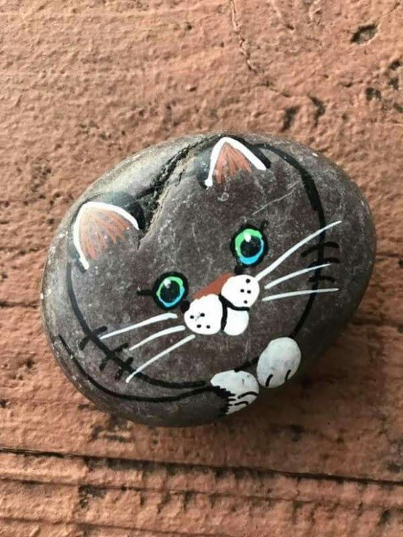Pin On Rock Painting