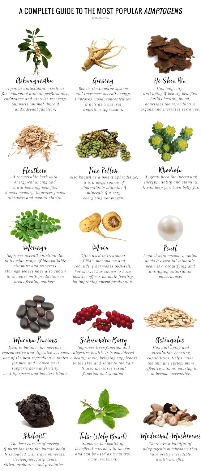 You've probably seen them mentioned before, but what are adaptogens? Our holistic nutritionist breaks it down in this comprehensive guide.