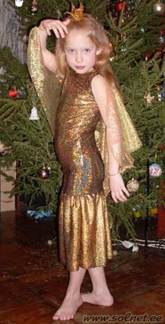 Самодельный новогодний маскарадный костюм