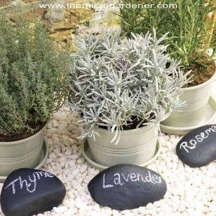 Paint pebble plant markers