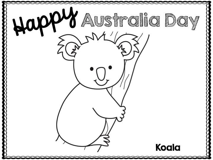 Happy Australia Day Colouring Sheets Available Here Koala Kangaroo Echidna Platypus And Kookab Australia Day Happy Australia Day Australia Day Celebrations