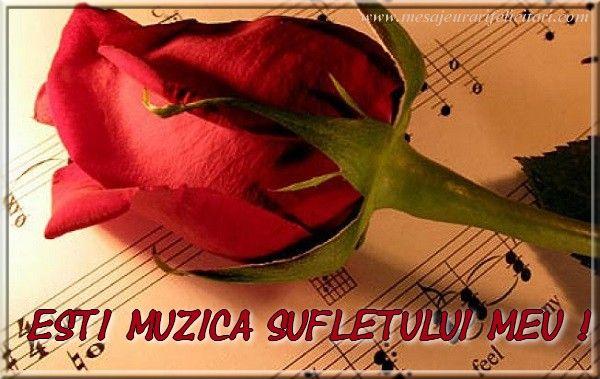 Esti muzica sufletului meu !