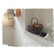 ムートンラグ/コストコ/グリーンのある暮らし/植物/漆喰DIY/関西好きやねん会…などに関連する他の写真