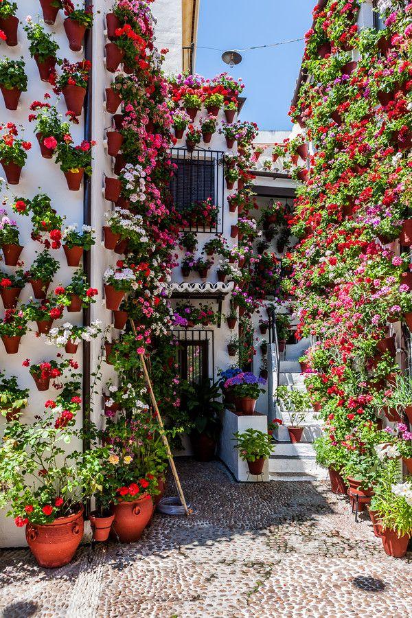 Festival de los Patios Cordobeses, Andalucía, Spain