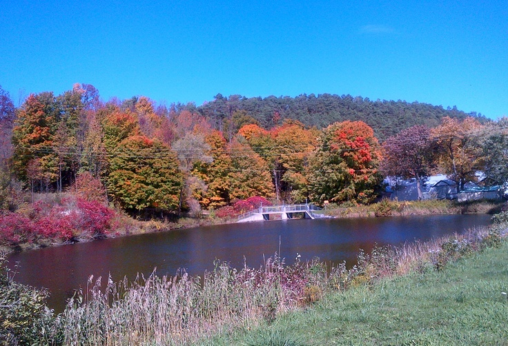 The Warkworth Mill Pond in October