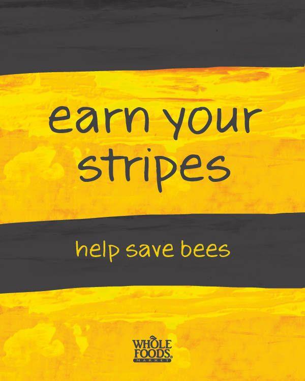 raising bees backyard beekeeping save the bees whole foods market bee