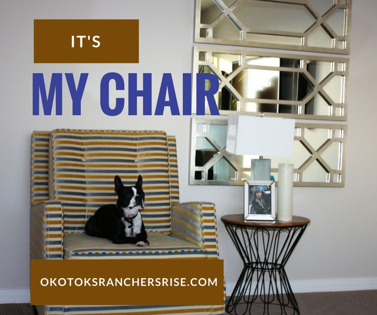 Yes, I'm the King and this is MY Chair. That's why I like hanging out at the showhomes at Ranchers' Rise. ~ Love, Mickey  http://www.okotoksranchersrise.com/