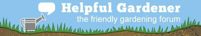 Fabulous organic gardening forum http://www.helpfulgardener.com/forum/viewforum.php?f=54