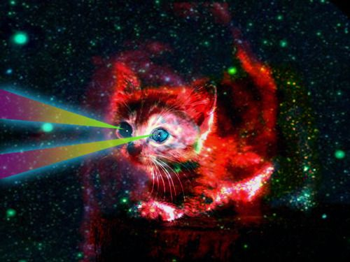 17 Best images about galaxy cats on Pinterest | Tacos ...