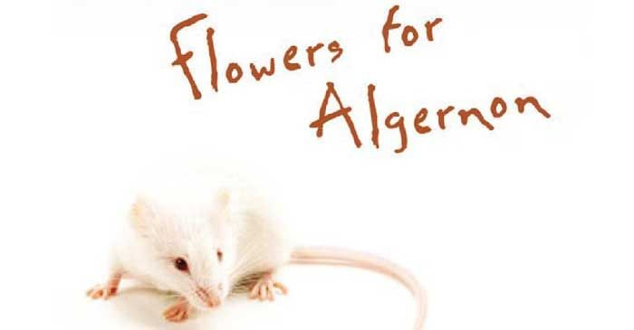 flowers for algernon chicago convention
