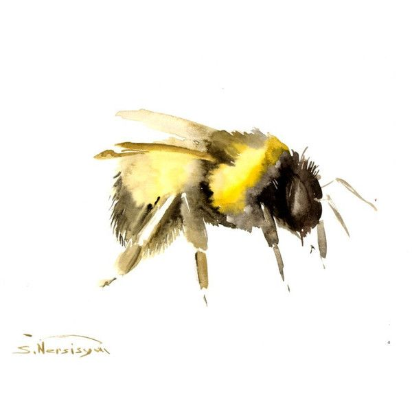 Bumblebee Original Watercolor Painting 12 X 9 In Art Bee 32 Liked On Polyvore Featuring Home Decor Wall