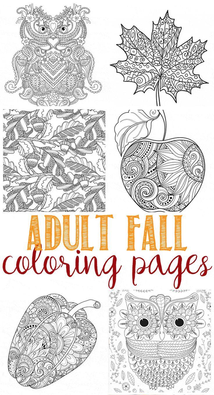 Free Fall Coloring Pages Fall Coloring Pages Fall Leaves Coloring Pages Fall Coloring Sheets [ 1359 x 736 Pixel ]