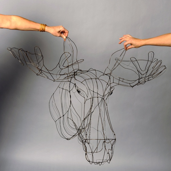 Elk by Elena Fregni