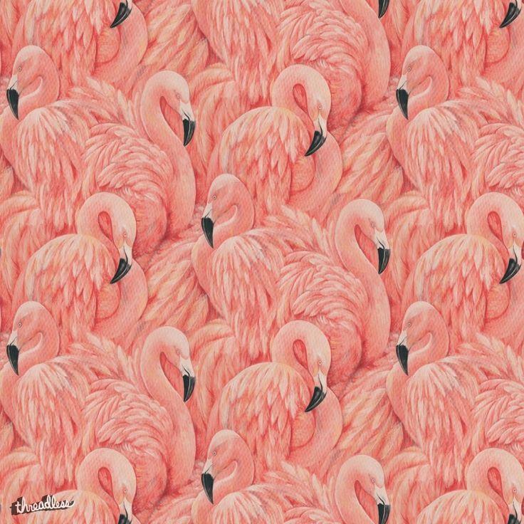 Best 25 Flamingo Wallpaper Ideas On Pinterest Flamingo