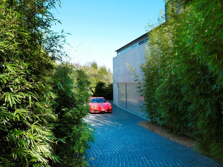 Driveway with bamboo
