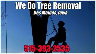 Des Moines Tree Trimming Services Emerges as Community Supporter