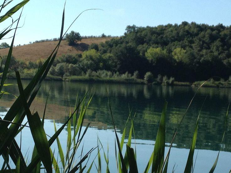 """Lago dell'Accesa - """"Un laghetto limpido e immerso nella natura"""""""