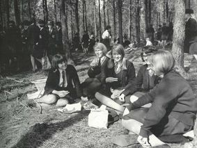Picnic in the pines.