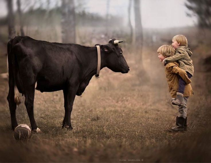 Best Elena Shumilova Images On Pinterest Babies Beautiful - Mother takes amazing pictures ever children animals farm