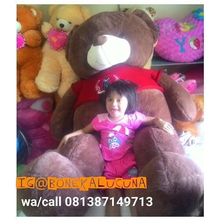Teddy BeaR Super Giant Kualitas Import  Ukuran 2 meter  Harga 1.300.000/pcs  Wa /call 081387149713  #teddybear #beargiant #Teddybear #bonekalucuna #bonekamurah #bonekalucu